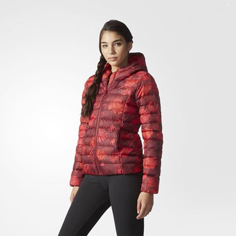 Picture of Nuvic Jacket